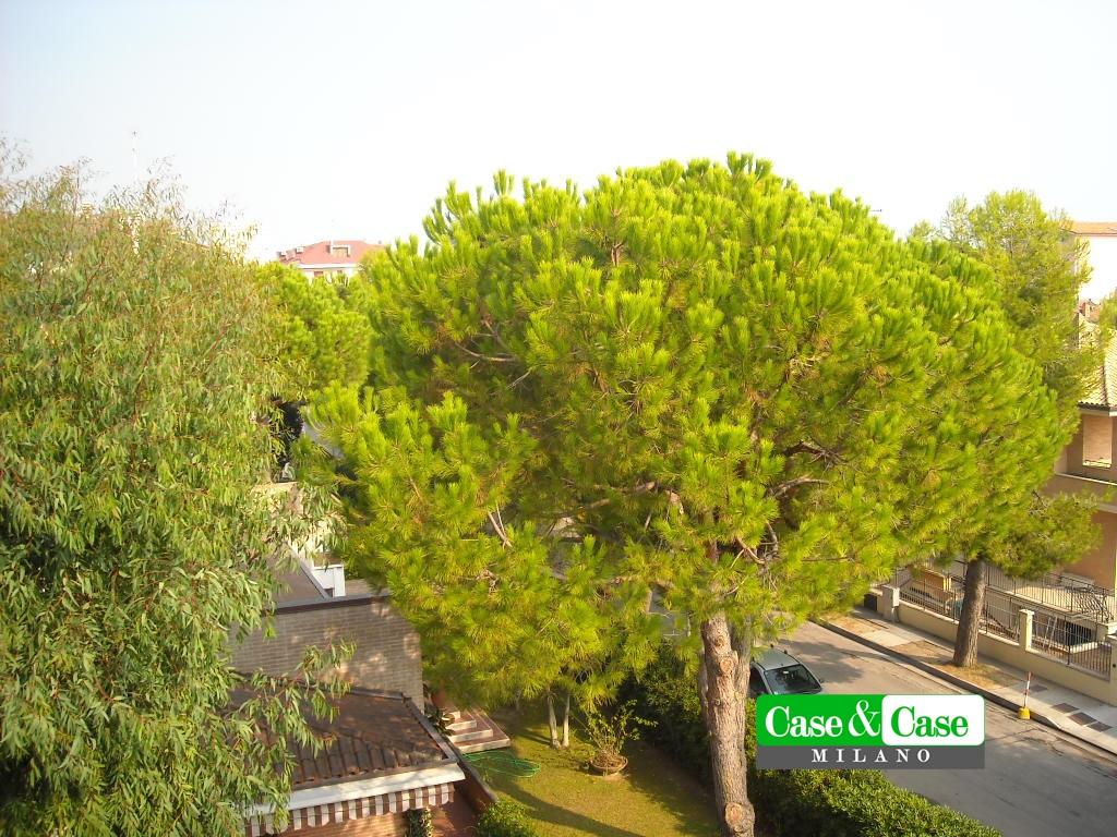 Appartamento Porto San Giorgio FM1039570